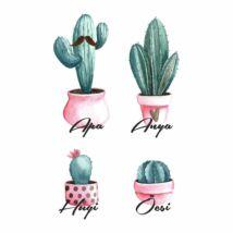 Kaktusz család